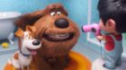 Cinéma - Comme des Bêtes 2 / La vie scolaire