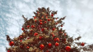 Tall Decorated Christmas Tree