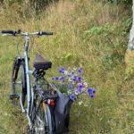 Champion 2chb Vélo